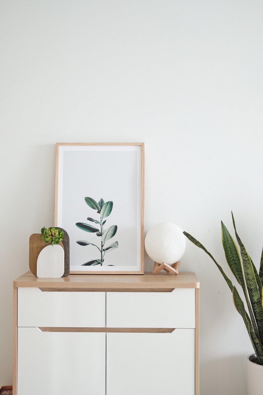 Få naturen inn i hjemmet med plakater